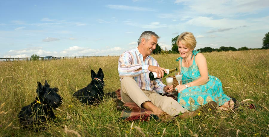 What is a pension check?